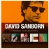 sanborn-david-original-album-series