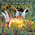 spyro-gyra-best-of-spyro-gyra-the-first-ten-years