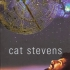 stevens-cat-on-the-road-to-find-out